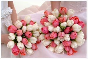 pink and white tulips in flowergirl bouquets